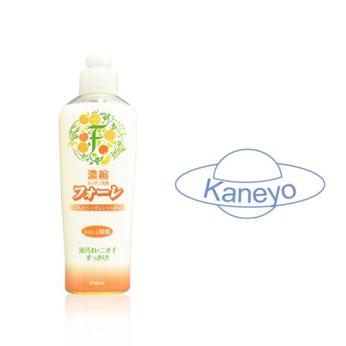 Средство для мытья посуды Faure антибактериальное Kaneyo Апельсин