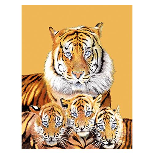 Флисовый плед «Семья тигров»