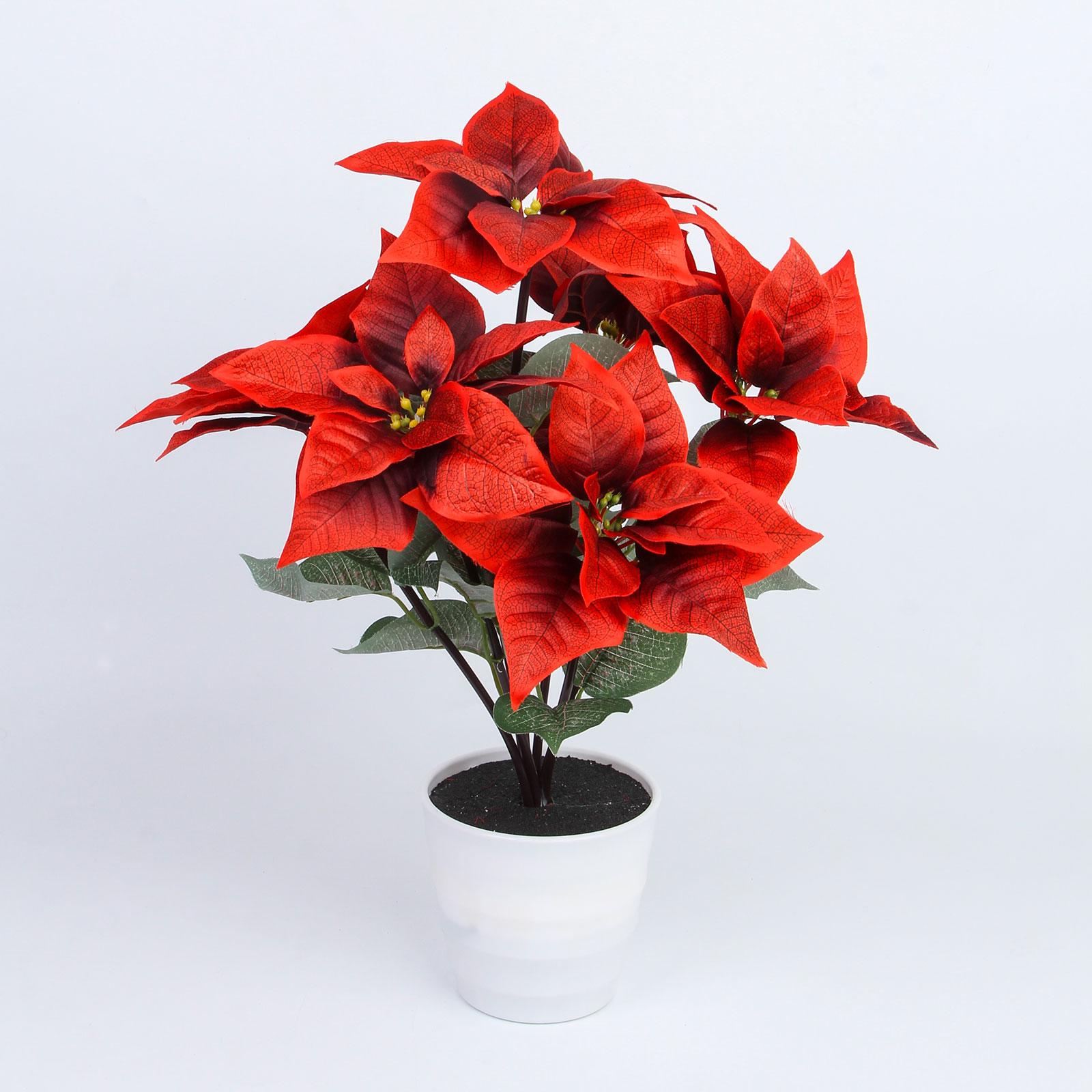 Цветок «Рождественская звезда» с подсветкой