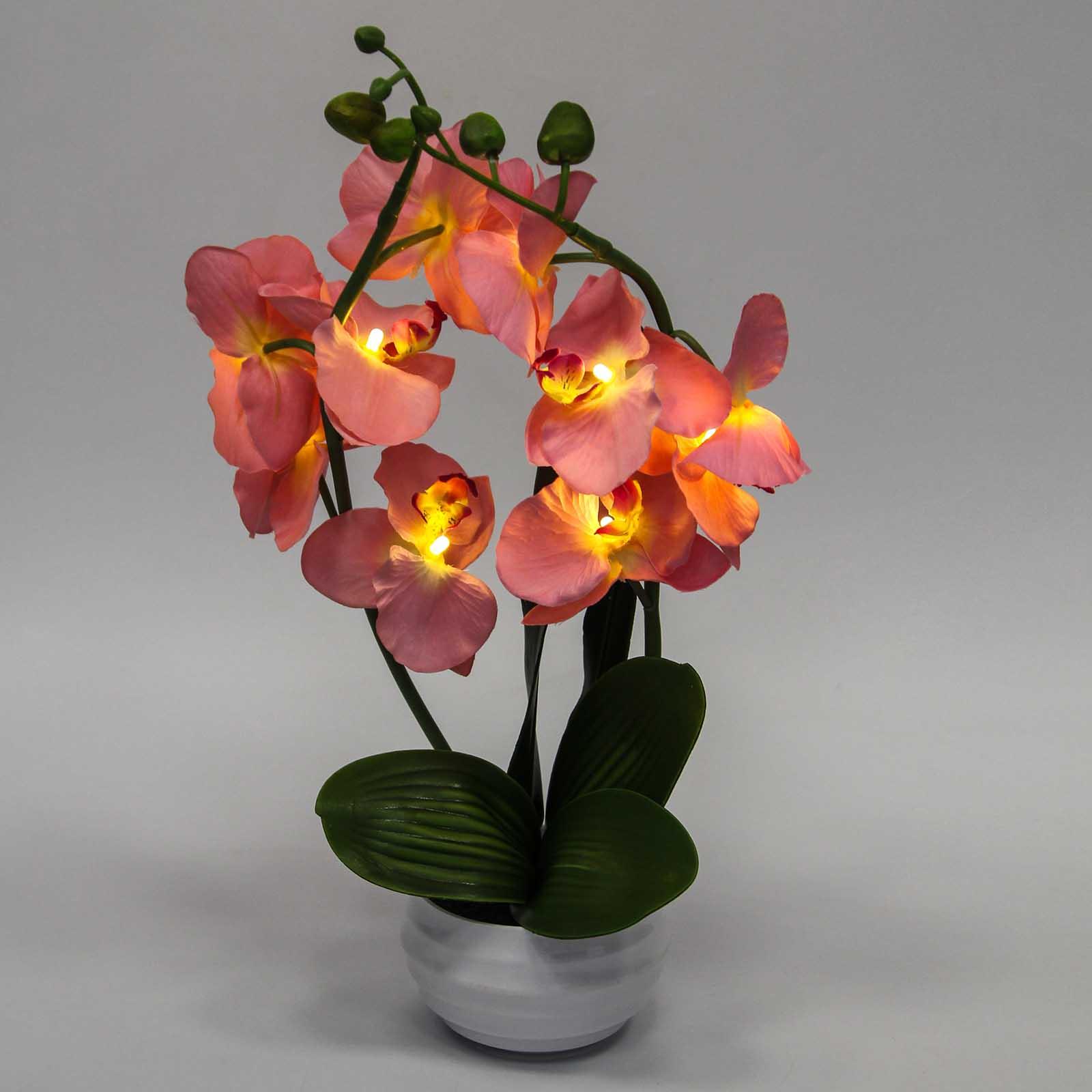 Орхидея с подсветкой