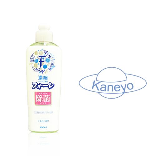 Средство для мытья посуды Faure антибактериальное Kaneyo Лайм